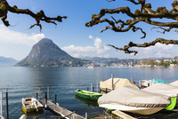 Plane tree branches in front of moored and covered boats and Monte San Salvatore in background, spring, Switzerland