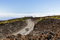Road going through a lava field with Canary Island pine trees (Pinus canariensis), La Palma Island in the distance, UNESCO World
