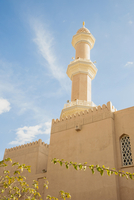 Tower of Mosque against Blue Sky with Leaves in the foreground, Muscat, Oman