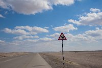 Camel Warning Road Sign against Blue Sky with Clouds near Nizwa, Adam and Ibra, Oman