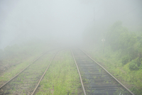 View from Panorma Train Window with Train Tracks Fading into Fog, On Route from Ella to Kandy, Sri Lanka