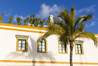 Close-up of white washed house and palm tree at the picturesque resort and fishing village of Puerto de Mogan, Gran Canaria, Las