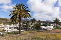 Valley of a Thousand Palms and the town of Haria, Lanzarote, Las Palmas, Canary Islands