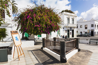 White washed buildings in the town center of Haria, Valley of a Thousand Palms, Lanzarote, Las Palmas, Canary Islands