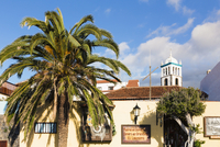 Palm Tree by House Wall and Tower of Iglesia de Santa Ana by Promenade, Garachico, Tenerife, Canary Islands, Spain
