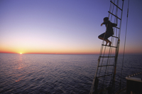Man Watching Sunset from Rigging aboard Tree of Life