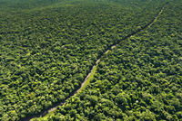 Aerial View of Road through the Middle of Jungle, Parana State, Brazil