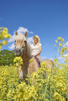 Portrait of young woman sitting on a Haflinger horse in a canola field in spring, Bavaria, Germany