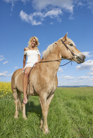 Portrait of young woman sitting on a Haflinger horse in a meadow in spring, Bavaria, Germany