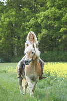 Young woman riding a Haflinger horse in meadow in spring, Bavaria, Germany
