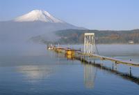 Mt. Fuji and Yamanaka ko (lake), Yamanashi, Japan 20025323186| 写真素材・ストックフォト・画像・イラスト素材|アマナイメージズ