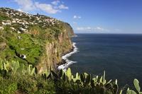Ribeira Brava, Madeira, Portugal, Atlantic Ocean, Europe 20025323188| 写真素材・ストックフォト・画像・イラスト素材|アマナイメージズ