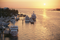Boats in the harbour, Nassau, New Providence Island, Bahamas, West Indies, Central America 20025323225| 写真素材・ストックフォト・画像・イラスト素材|アマナイメージズ