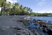 Punaluu Black Sand Beach, Island of Hawaii (Big Island), Hawaii, United States of America, Pacific, North America 20025323248| 写真素材・ストックフォト・画像・イラスト素材|アマナイメージズ