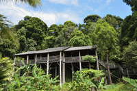 Traditional house, Sarawak Cultural Village, Sarawak, Borneo, Malaysia, Southeast Asia, Asia 20025323275| 写真素材・ストックフォト・画像・イラスト素材|アマナイメージズ
