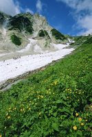 Hikers en route to Mt. Hakuba Glacier, Northern Alps, Japan