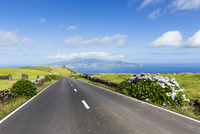 Road going through pastureland in front of a view to Faial in the distance, Pico Island, Azores, Portugal