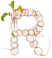 Letter R Made with Radishes