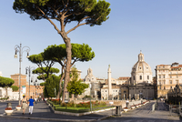 Pine trees on Via dei Fori Imperiali in front of the domes of Santa Maria di Loreto and Santissimo Nome di Maria al Foro Traiano 20025324113| 写真素材・ストックフォト・画像・イラスト素材|アマナイメージズ