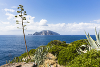 View of Capri from Punta Campanella on the Sorrento Peninsula coast, Campania, Italy