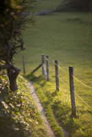 Countryside footpath and protective fence