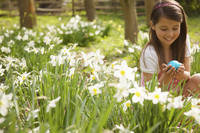 Close up of a young girl holding an Easter egg in a field of daffodils 20025325126| 写真素材・ストックフォト・画像・イラスト素材|アマナイメージズ