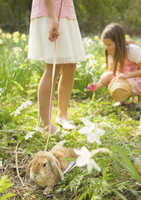 Girl walking lop-eared rabbit on leash at Easter egg hunt