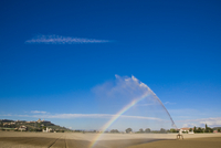 Irrigation sprinkler spraying water over a field with rainbow