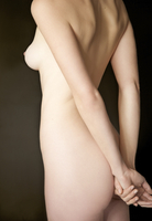 Back view of a nude woman - headless