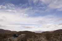 Car Driving Through Joshua Tree National Park