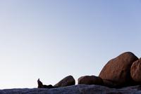 Man's Feet amongst Rocks 20025325905| 写真素材・ストックフォト・画像・イラスト素材|アマナイメージズ