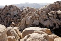 Back View of Man Standing on Rock 20025325919| 写真素材・ストックフォト・画像・イラスト素材|アマナイメージズ