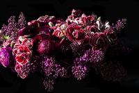 Close up of Bouquet of Flowers 20025326208| 写真素材・ストックフォト・画像・イラスト素材|アマナイメージズ