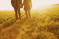 Couple Walking in a Field Holding Hands, Low Section