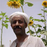 Farmer in field,portrait