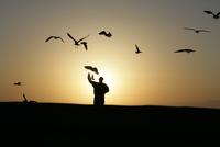 View of a man on a scenic sunset. 20025326422| 写真素材・ストックフォト・画像・イラスト素材|アマナイメージズ