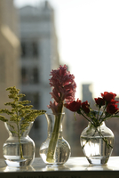 Flowers in vases kept in plain surface,close-up