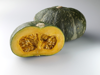 Kabocha Squash ingredients editorial food