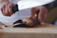 Cracking a Crab Claw