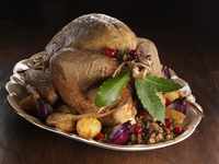 Roast turkey