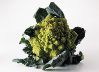 A Broccoflower brassica oleraca
