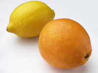 An orange and a lemon on a white background