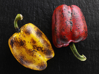 Flamed red and yellow peppers