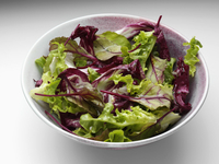 A bowl of radicchio mixed leaf salad on a white background