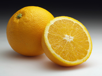Navel oranges on a neutral background