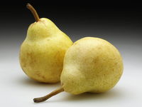 Two whole ripe pears