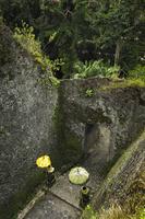 Indonesia, Bali, Gunung Kawi Temple site, elevated view