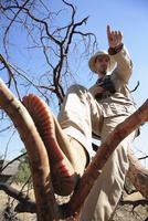 Africa, Botswana, Okavango Delta, Man sitting in tree, pointing, low angle view 20025327652| 写真素材・ストックフォト・画像・イラスト素材|アマナイメージズ