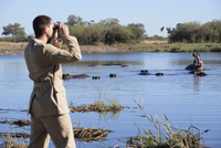 Africa, Botswana, Okavango Delta, Man viewing hippos through binoculars, rear view 20025327654| 写真素材・ストックフォト・画像・イラスト素材|アマナイメージズ