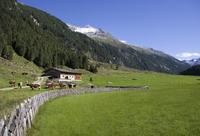 Austria, Krimmler Achental, Hohe Tauern Mountain range, pasture land